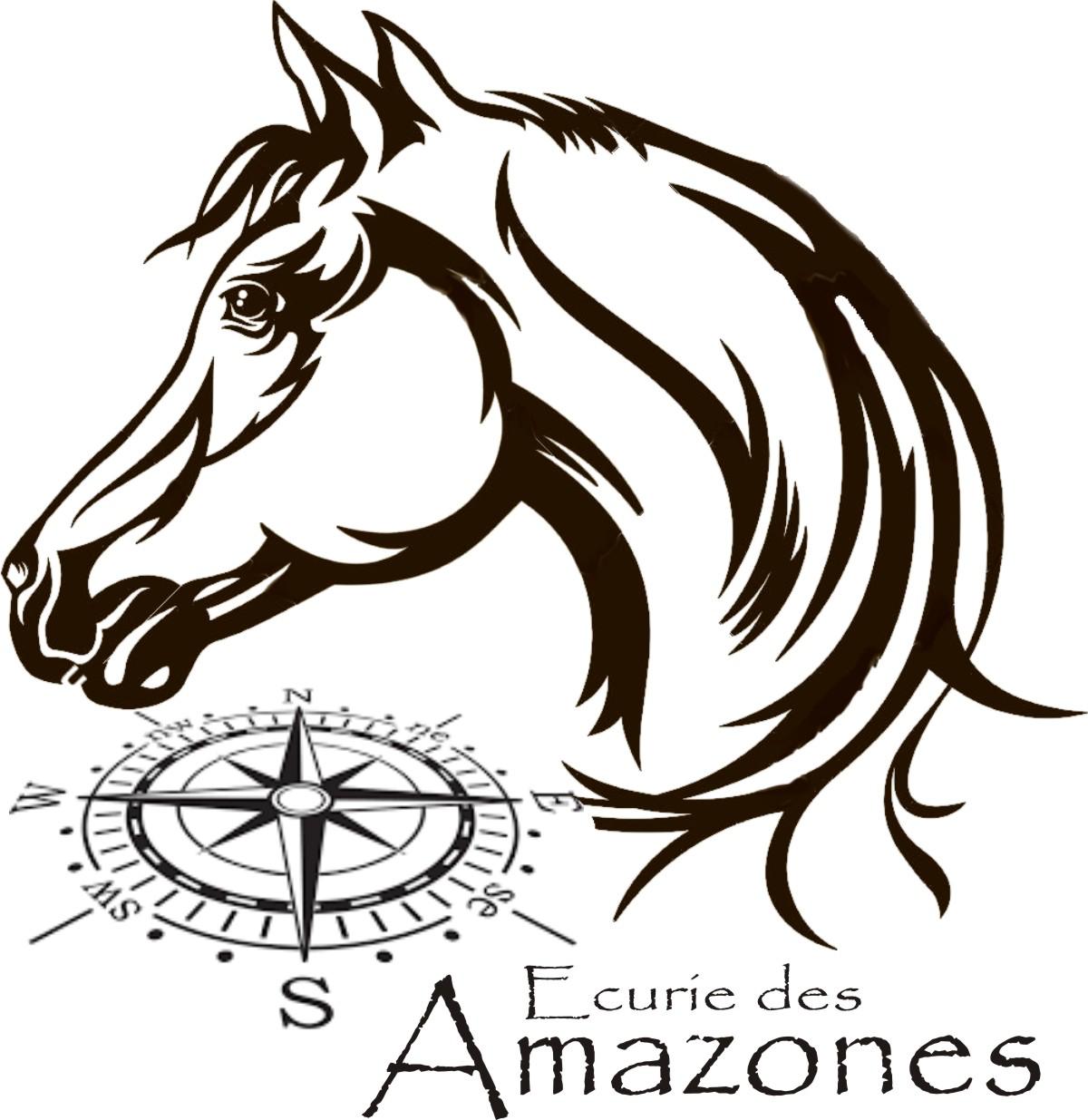 Ecurie Des Amazones
